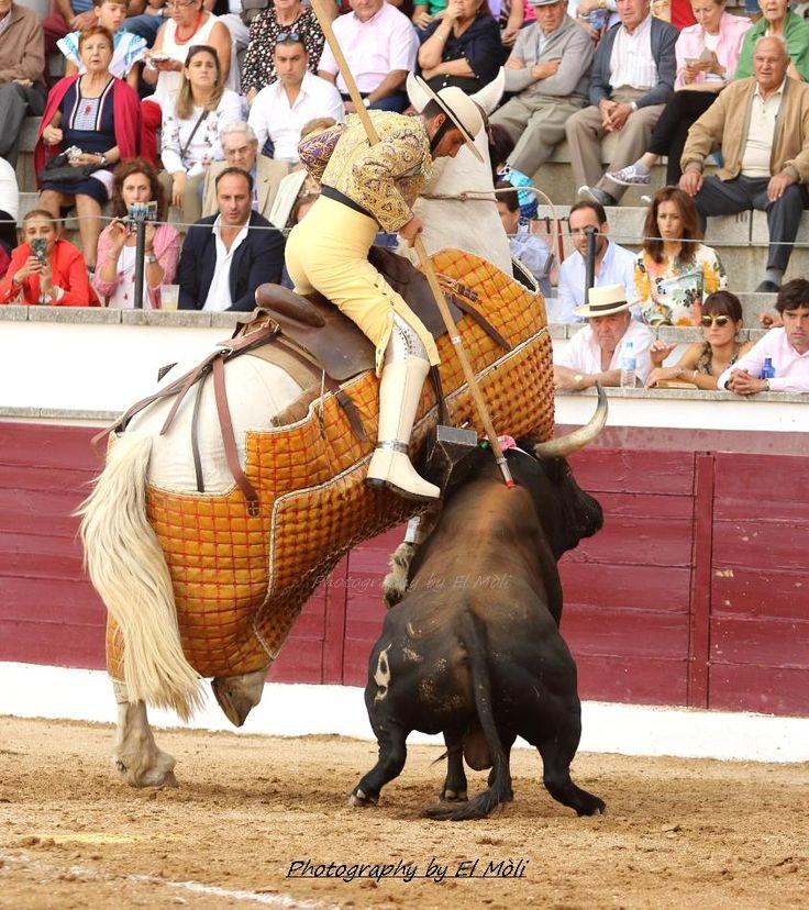 Santanero 4, de la ganadería de Baltasar Iban, lidiado en San Martin de Valdeiglesias (Madrid) el 9 de septiembre de 2017. Matador Ivan Vicente.