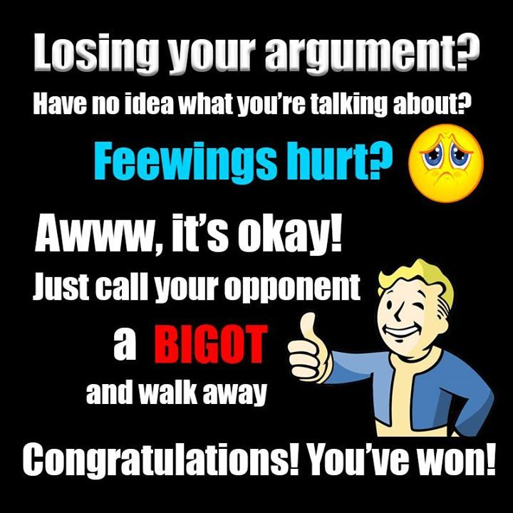 """This describes the fall-back """"argument"""" of the Left:  if one is losing an argument immediately call your opponents bigot, racist, misogynist, etc.  The problem with this approach is that they have weakened the meaning of these words.  It's crying wolf.   It's actually hurt their causes."""
