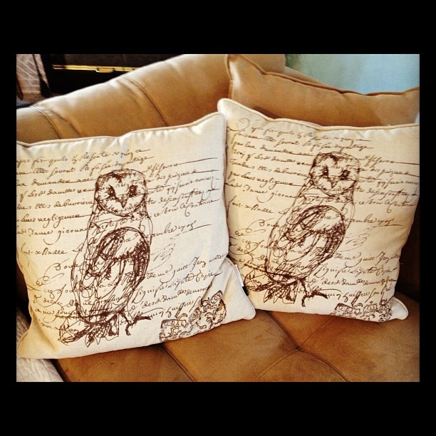 Owl pillows from Home Goods...must find a home goods store near us :)