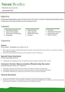 current resume formats