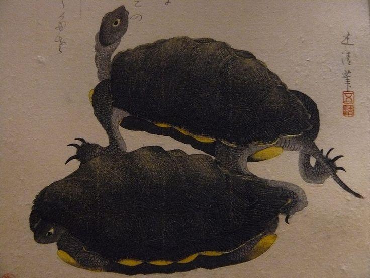 """GOSEI Hotei,1810 - Deux Tortues (Guimet) - Detail -a  -  TAGS : art painter details détail détails detalles painting paintings peinture peintures 19th 19e """"peinture 19e"""" """"19th-century paintings"""" """"19th century"""" """"details of painting"""" """"details of paintings"""" tableaux paintings Guimet Gosei Hotei """"Hotei Gosei"""" """"Epoque Edo"""" Edo """"Deux Tortues"""" tortue turtle animal nature Japon Japan"""