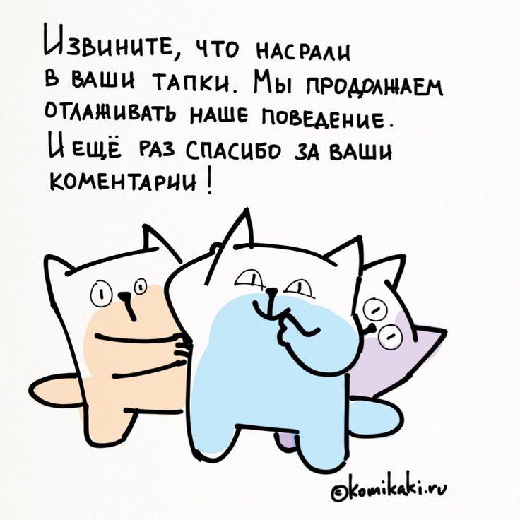 https://instagram.com/innubis/