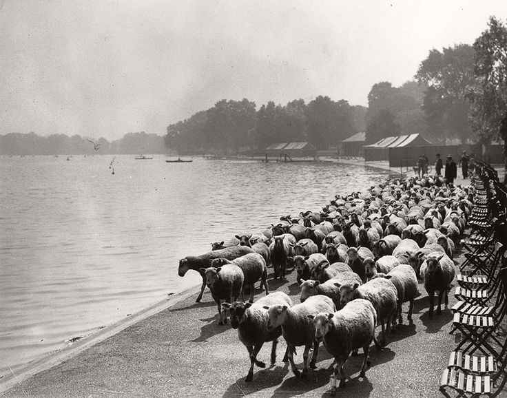 London in the 20's