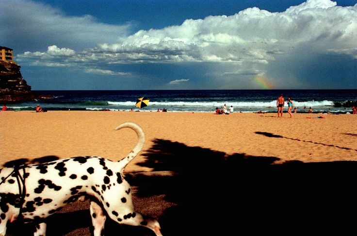 """Australia, Sydney, Queenscliff Beach, 2001"" by Narelle Autio"