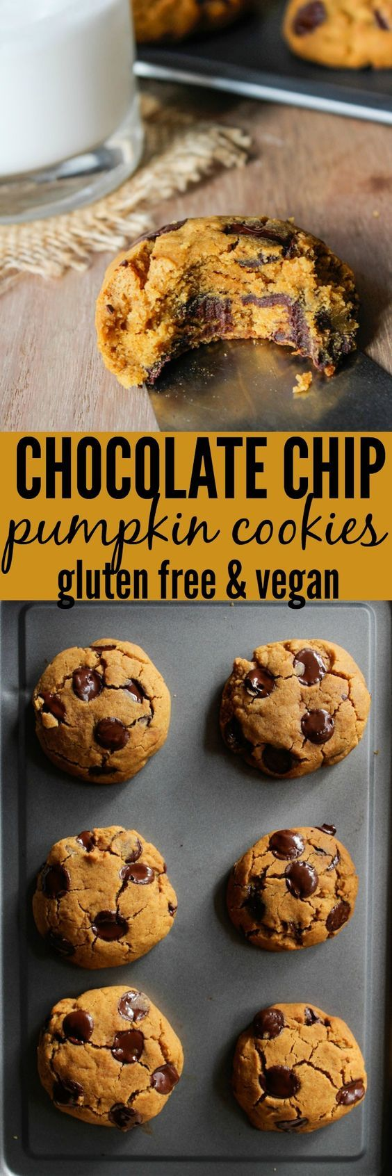 A gluten free, vegan, and low fodmap recipe for Chocolate Chip Pumpkin Cookies @asaucykitchen.com
