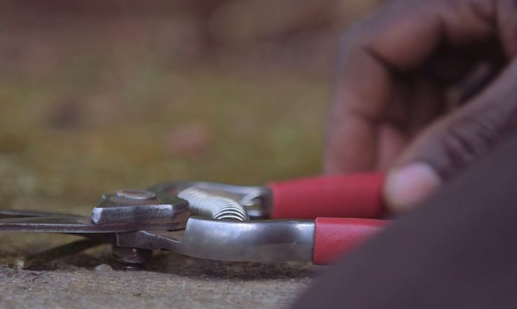 """MASS Design Group's new video """"Nziza Cyane: Landscapes that Heal"""" features the collaboration between senior director Sierra and master gardener Jean Baptiste in Rwanda."""