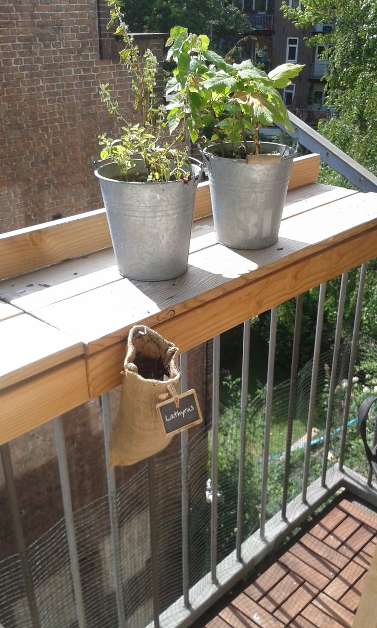 Greening your balcony