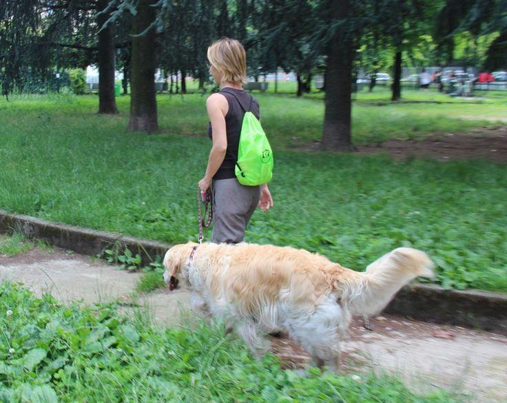 http://regalidacani.it/categoria-prodotto/regali-da-cani/kit-da-cani/valigia-da-cani/  #valigiadacani #tempolibero #viaggiconilcane #cani #relax #doglover #goldenretriver #cane #dog #dogfriendly