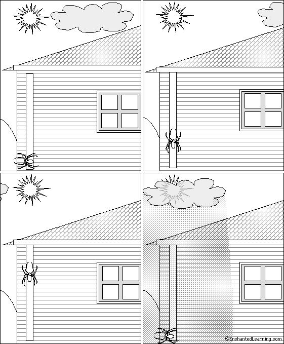eency weency spider coloring pages - photo#12