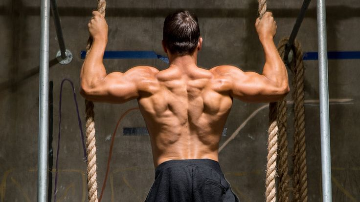 5 Back Workouts For Mass - A Beginner's Guide!?fromPage=gain%2Ctype=articles%2Cid=eaf006ee-4ca3-48be-9e0f-75fe7e820623%2Cversion=4dcdbc6a802b2931f9082003cc9fbff3e86c0717