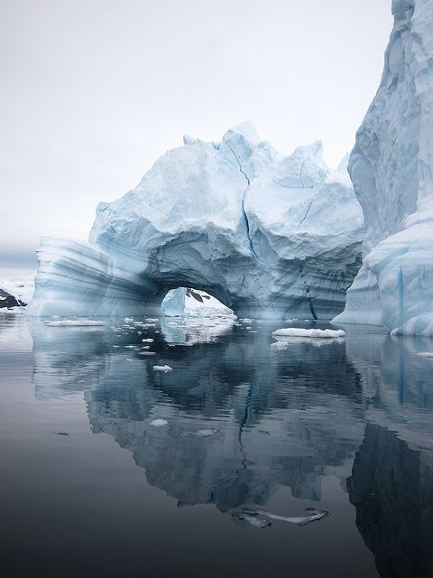 Antartica  Take the time to appreciate the beauty in everything and everyone. Especially in yourself. /