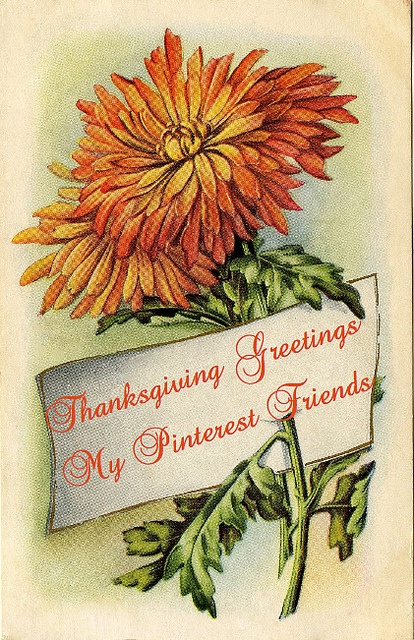 Happy Thanksgiving Holiday to all my awesome sisters!! May the time you spend with others leave beautiful lasting memories!! Much love and gentle hugs to you and your families!!