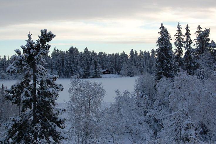 Råbjørnhytta. winter 2015, een kleine trektocht op de Nordmarka met de kinderen.