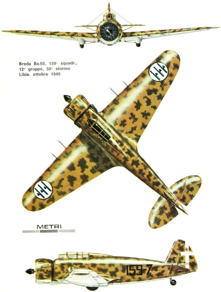 Breda Ba 65 - Regia Areonautica 159a Squadriglia, 12° Gruppo, 50° Stormo