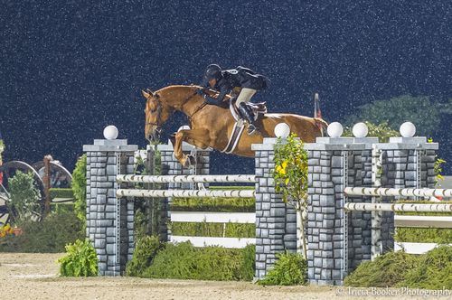 Liza Boyd and Brunello at the 2014 USHJA International Hunter Derby Championship. Tips of a highly successful rider.