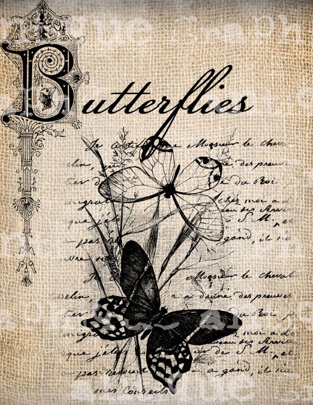 Antique Summer Butterfly French Handwriting  via Etsy.