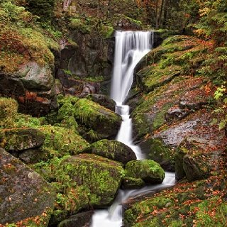 Black Forest Black Forest Germany And Beautiful Places To Visit On Pinterest