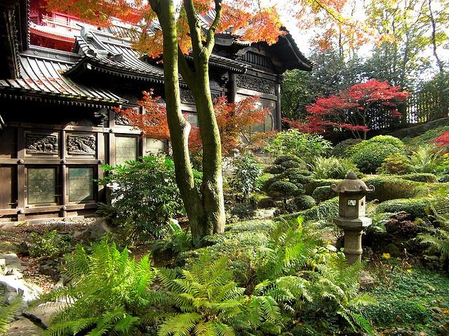 Jardin du tour japonais tuin van de japanse toren for Bd du jardin botanique 50 bruxelles