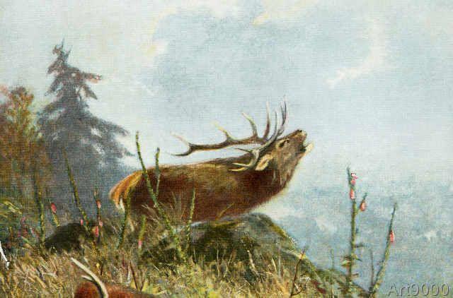 Carl Friedrich Deiker - Deer calling