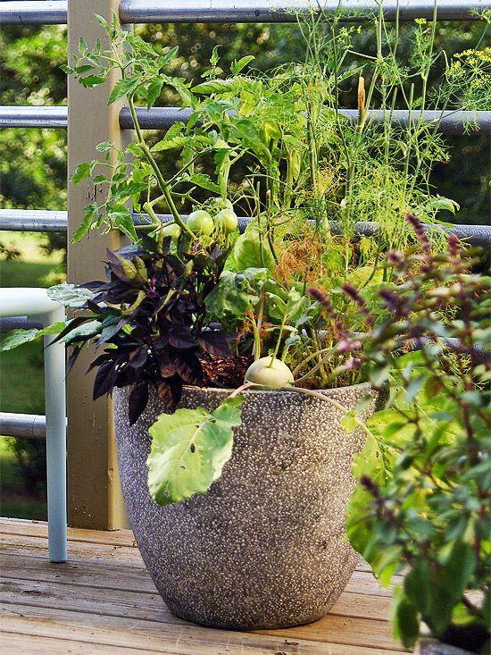 herb container garden: Container Gardens, Outdoor Plants, Growing ...