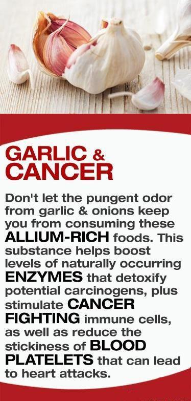 Garlic Cancer fighter