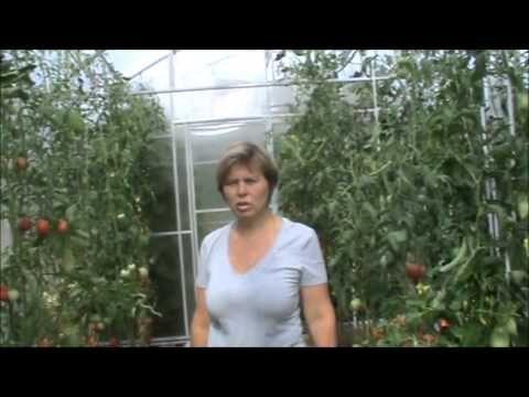 Практика природного земледелия 10 лет! Марина Дорофеева - YouTube