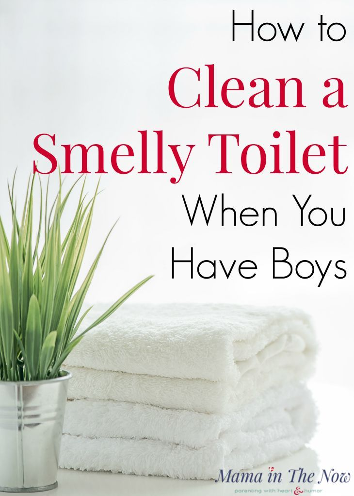 How to Clean a Smelly Toilet When You Have Boys Cleaning Tips