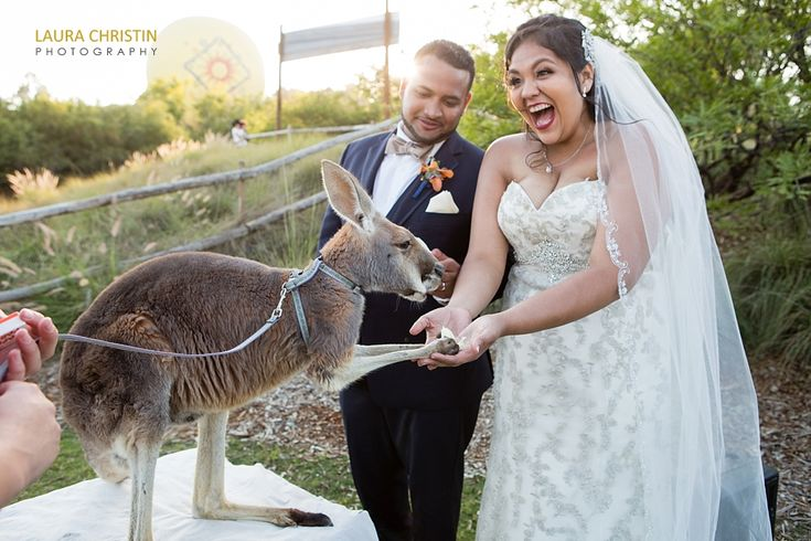 The definition of a wild wedding. Love her reaction!