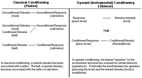 Classical Conditioning (Pavlov) vs Operant Conditioning (Skinner)