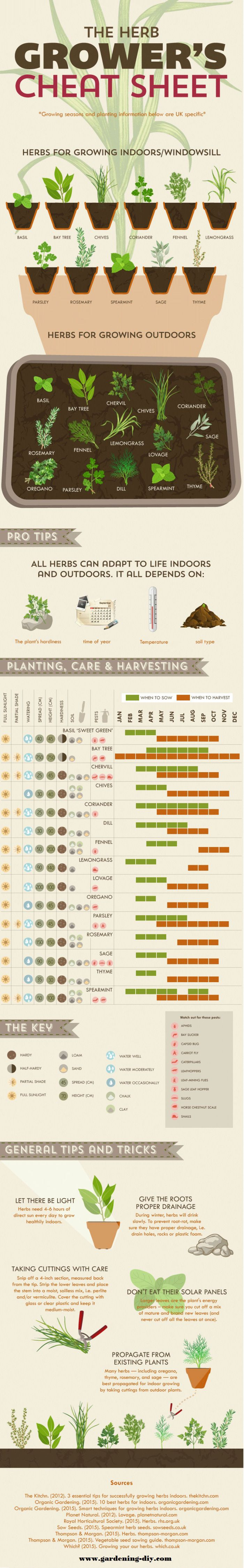 Good To Be Home Herb Growing Cheat Sheet