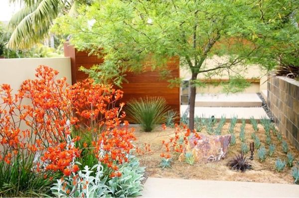 This spectacular small garden marries beautiful colors, shapes and textures.