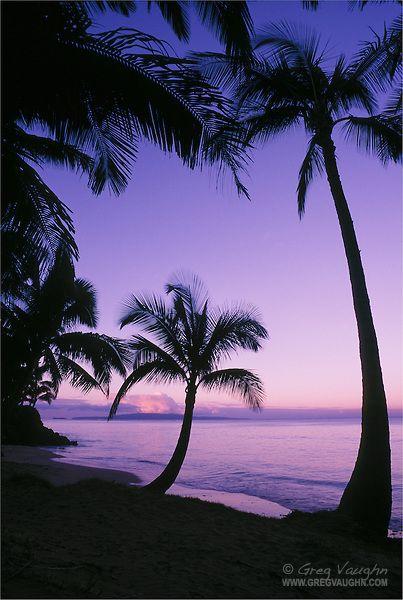 Palm trees and beach at dawn with Kahoolawe Island in distance; Kihei, Maui, Hawaii.