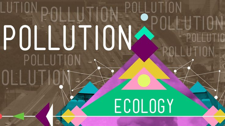 Pollution: Ecology #11