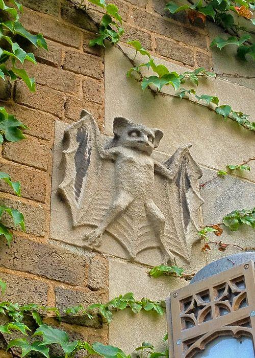 Best images about bat artwork on pinterest antiques