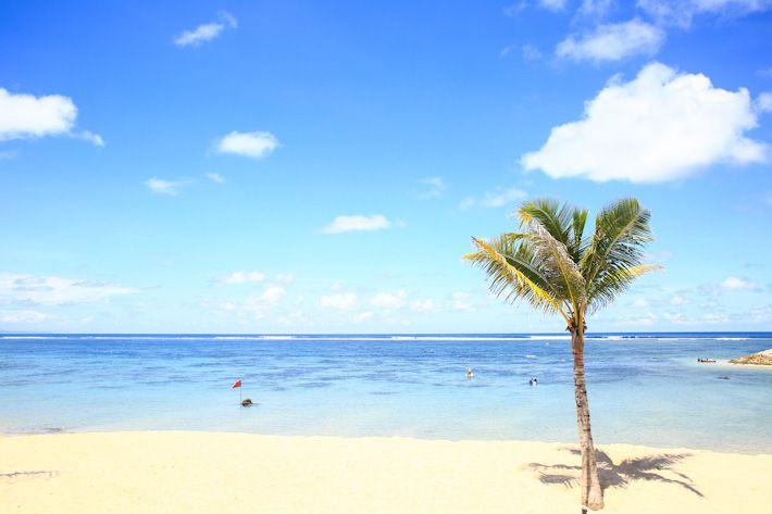 Bali's Destination Travel Guide