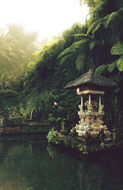 An Asian secret garden. This beautiful place looks so peaceful and thoughtful!