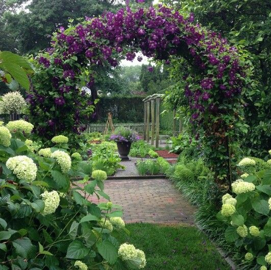 Love this arch smothered with purple clematis - Ina Garten instagram