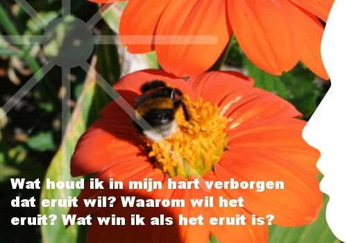 """""""Wat houd ik in mijn hart verborgen dat eruit wil? Waarom wil het eruit? Wat win ik als het eruit is?"""" Ook je eigen persoonlijke dagelijkse inspiratiekaart ontvangen? http://www.confront.nl/inspiratiekaarten/"""