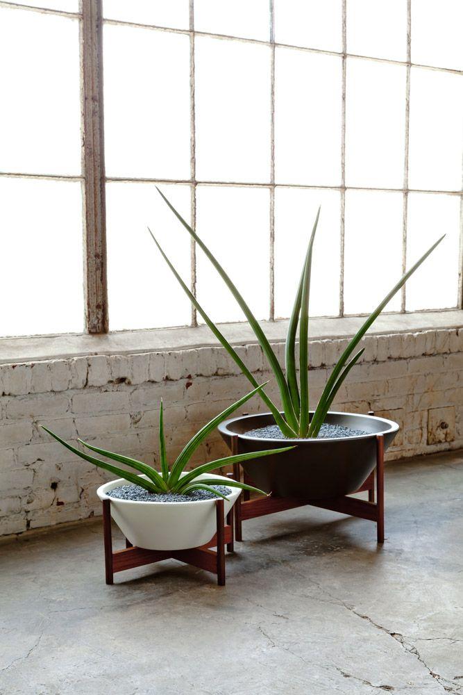 1000 Ideas About Large Ceramic Planters On Pinterest