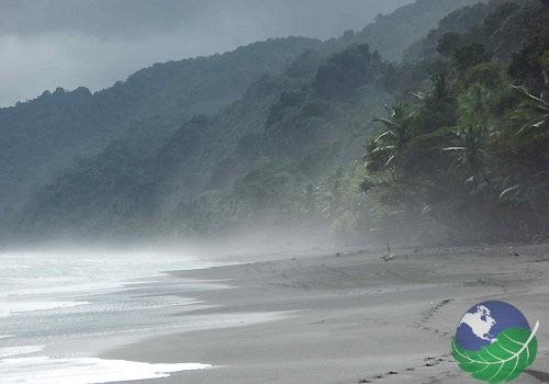 Corcovado National Park, Costa Rica.