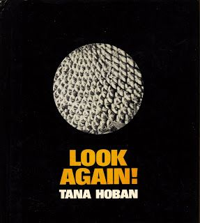 Brickbat Books: FEATURED: Four by Tana Hoban
