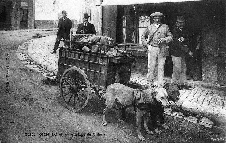 Colporteur avec charrette à chiens