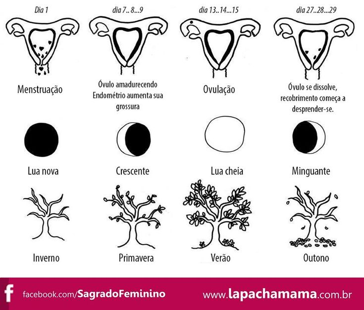 "Pachamama ""Ciclos do Sagrado Feminino"". Love your uterus. #uterus #utero #girls #girlpower #grlpwr"