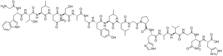Galanin. From contraction of smooth muscle tissue in the bowel to inhibition of insulinsecretion from the pancreas - or augmenting then pai allieviating effect of morphine. Galanin is predominantly an inhibitory, hyperpolarizing neuropeptide and as such inhibits neurotransmitter release. Linked to an acute antidepressive efficacy, probably by a mechanism related to that of therapeutic sleep deprivation.