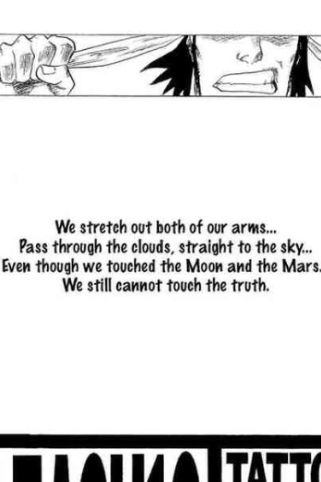 77 best images about bleach quotes on pinterest