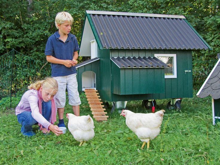Mobiles Hühnerhaus übernimmt Eierproduktion und Rasenpflege in einem --> http://baufux24.com/mobiles-huehnerhaus-uebernimmt-eierproduktion-und-rasenpflege-in-einem-gartenglueck-der-nachhaltigen-art/