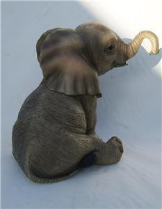 Tiny baby Elephant .