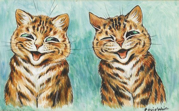 two stripe cats