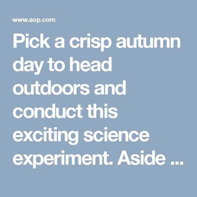 Pick a crisp autumn day to head outdoors and conduct this exciting science experiment. Aside from the pumpkin, most supplies for this activi