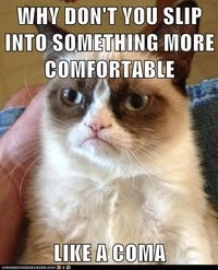 Why don't you slip into something more comfortable, like a coma. Grumpy Cat.